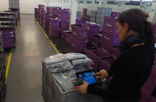 Fashion retailer updates paper picking to manual batch sorting